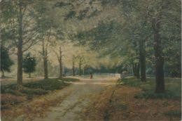 Postcard - Art - John Mather Australian - Autumn In The Fitzroy Gardens 1894 - No Card No. Unused Very Good - Postcards