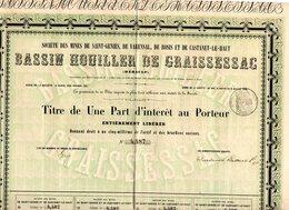 Titre Bassin Houiller De Graissessac Sté Des Mines St Geniès, Varensal, Rosis, Castanet Le Haut (34) - Mijnen