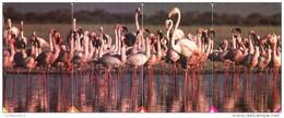 *SUDAFRICA* - Serie Completa Usata (puzzle) - Sudafrica