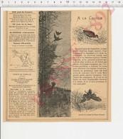 2 Scans 1892 Chasse Bécasse à La Croule Oiseau Moineau Siège De Paris M. Crémieux Et Archevêque De Tours 226CH29 - Non Classificati