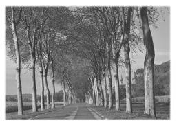 SAINT-SORLIN-EN-BUGEY - Route Départementale 122 - France