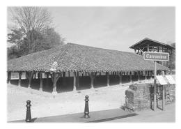 SAINT-TRIVIER-DE-COURTES - Carronière - Frankreich