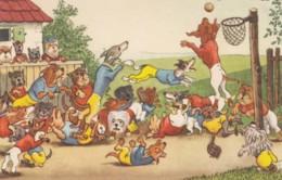 Artist Image DogsDressed As People Play Sports Basketball Game C1950s/60s Vintage German Postcard - Illustrators & Photographers