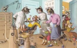 Mainzer Artist Image Cats Dressed As People Dentist Office C1950s/60s Vintage Belgian Postcard - Illustrators & Photographers