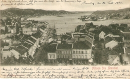 Hilsen Fra Arendal ( Noorwegen ) : Panorama 1903 - Norvège