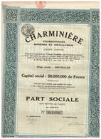Titre Ancien - Charminière - Charbonnages - Minières Et Métallurgie - Sté Anonyme  - Titre De 1924 - Mines