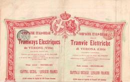 Titre Ancien - Compagnie Italo-Belge Des Tramways Electriques De Vérone - Sté Anonyme  - Titre De 1905 - Chemin De Fer & Tramway