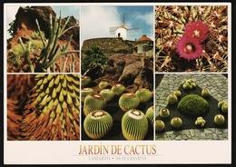 Jardin De Cactus  -  Mehrbild-Ansichtskarte Ca. 2010   (groß) - Flores, Plantas & Arboles