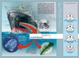 Guinea Bissau 2012 Water Pollution & Fauna( Ships Crabs ) - Guinea-Bissau