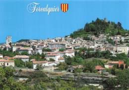 FORCALQUIER  Vue Panoramique 13  (scan Recto Verso) MD2501BIS - Forcalquier