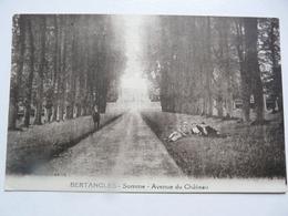 CPA 80 SOMME - BERTANGLES : Avenue Du Château - Otros Municipios