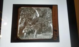 BAUME LES MESSIEURS Photo Négatif Sur Verre - Glasplaten