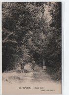 Yport- Sous Bois - Yport