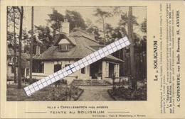"""CAPPELLENBOSCH-KAPELLEN""""TEINTE AU SILGNUM-A.CAPPENBERG RUE EMILE BANNING 35 ANVERS"""" - Publicités"""