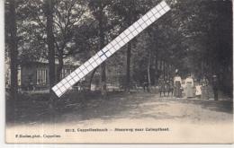 "CAPELLENBOSCH-KAPELLEN""STEENWEG NAAR CALMPTHOUT""HOELEN 8012 UITGIFTE 1914 - Kapellen"