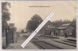 """CAPPELLENBOSCH (HEIDE)-KAPELLEN""""DE STATIE MET AANKOMENDE TREIN-OVERWEG""""HOELEN 6505 UITGIFTE 1912 - Kapellen"""