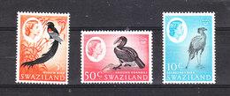 "Swaziland. -1962. Uccello Paradiso, Bucero,Secretarioi"".Current Series: Widow, Hornbill, Secretary. RARE.MNH - Papageien"
