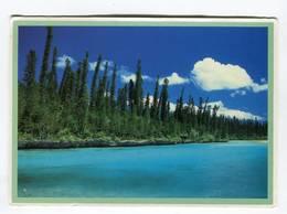 C.P °_ N.Calédonie-L'île Des Pins-1992- 11x15,3 - Nueva Caledonia