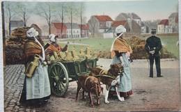 CPAx12 Lot LAITIERES Belges Flamandes Attelage à Chien Dog Hitch Hond Melk Lait Milk - Marchands Ambulants