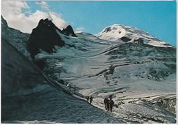 74  La Route Du Mont-blanc Rochers Des Grands Mulets  (48) - Chamonix-Mont-Blanc