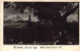Crete - CHANIA - White Mountains - REAL PHOTO - Publ. Unknown. - Grecia