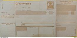 9735 - Ganzache  Postanweisung 25 Pf - Deutschland