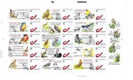 BUZIN Oiseaux Divers Et Photo A.Buzin Feuille De 15 Timbres Bpost 1 Année 2010 - Feuilles Complètes