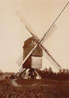 1894 Photo De Bodeghem Saint Martin Dilbeek Moulin - Ancianas (antes De 1900)