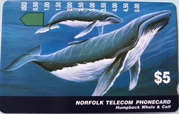 "ILE NORFOLK  -  Phonecard  -  "" Tamura "" -  Humpback Whale § Calf  -  $5 - Norfolk Island"