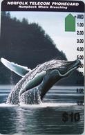 "ILE NORFOLK  -  Phonecard  -  "" Tamura "" -  Humpback Whale Breaching  -  $10 - Norfolk Island"