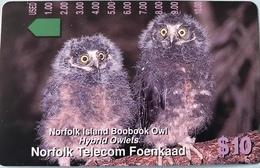 """ILE NORFOLK  -  Phonecard  -  """" Tamura """" -  Norfolk Island Boobook Owl  -  $10 - Norfolk Island"""