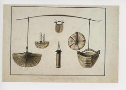 Charles Alexandre Lesueur Illustrateur 1778-1846 : Timor, Indonésie : Vases à Eau De Diverses Formes 1800/1804 - Timor Oriental