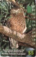 """ILE NORFOLK  -  Phonecard  -  """" Tamura """" -  Norfolk Island Boobook Owl   -  $5 - Norfolk Island"""