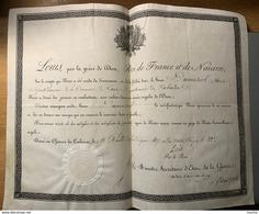 60027 - Louis Roi De France Et De Navarre  Témoignange Au Genttilhomme Dumesnil De Caen Château Des Tuileries 11.07.1817 - Documents Historiques