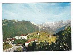 3705 - S CARLO - MASSA 1977 - Italia