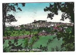 3706 - SARTEANO SIENA PANORAMA 1960 CIRCA - Italia