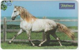 BRASIL J-847 Magnetic Telefonica - Animal, Horse - Used - Brasilien