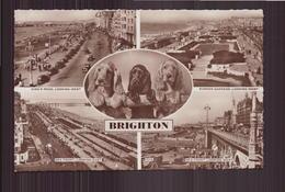 Brighton - Brighton