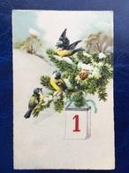 """Cpa--""""Mesanges Chantant Sur Branche D'arbre Ou Est Suspendu Calendrier Avec Face Du 1 Janvier""""--(1112) - New Year"""