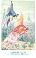 Carte Non-postale (verso Vierge), Téléscopes Chinois De L'Aquarium Boucher  ( Poissons ) ( état )  (AN) - Pesci E Crostacei