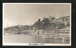 AK Wellington, Panorama - Nouvelle-Zélande