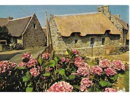 29 Chaumiere Bretonne  Fleurs  Village - Francia