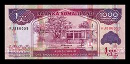 Somalilandia Somaliland 1000 Shillings 2014 Pick 20c SC UNC - Banconote