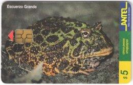 URUGUAY A-287 Chip Antel - Animal, Frog - Used - Uruguay