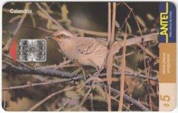 URUGUAY A-305 Chip Antel - Animal, Bird - Used - Uruguay
