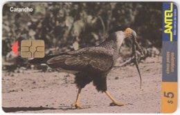 URUGUAY A-309 Chip Antel - Animal, Bird - Used - Uruguay