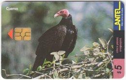URUGUAY A-318 Chip Antel - Animal, Bird, Vulpture - Used - Uruguay