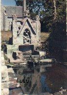 DEPT 29 : édit. Jos Le Doaré N° MX 1981 : Fontaine Sacrée Du Drennec , Près De Bénodet - Francia