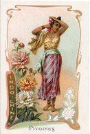 Carte Chromo  Fleurs, Costume Et Pays -  PIVOINES  -  INDOCHINE - Sonstige