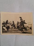 (A2) CP Photo Neu Usumbura : Guerriers Dansants. - Congo Belge - Autres